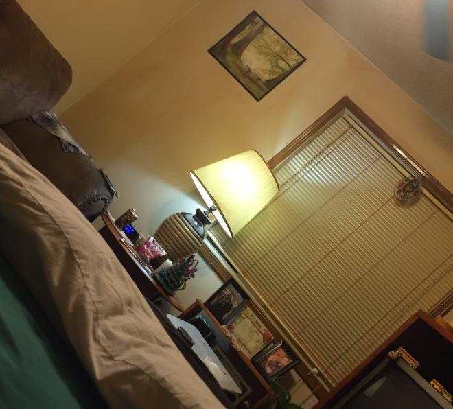 bedroomandlivingroom.jpeg